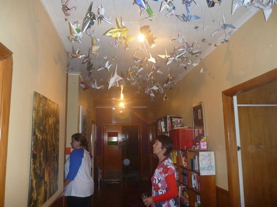 Rongo Backpackers: Hallway with lots of interesting things to see and read