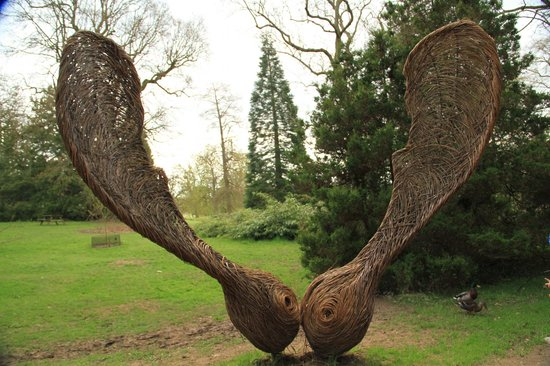 Wakehurst Place: Sycamore sculpture