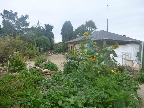 Rongo Backpackers : Part of the beautiful gardens