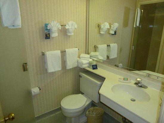 ทราเวลลอดจ์ซีแอทเทิ้ล บาย เดอะสเปซนีเดิ้ล: Bathroom