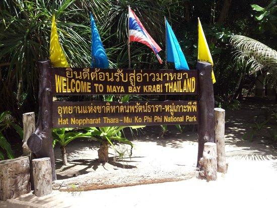 Phuket Tours Direct Phuket Thailand