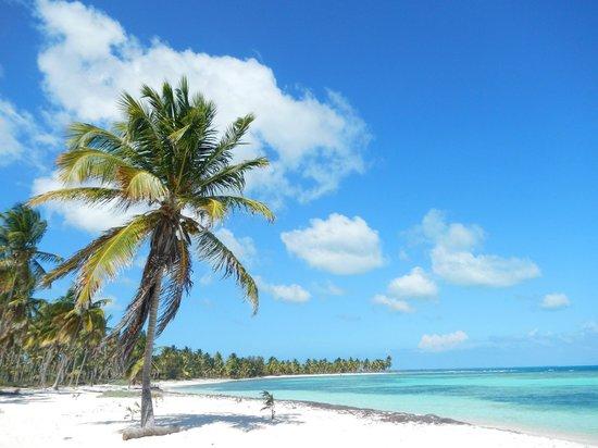 Casa Daniel : canto della playa