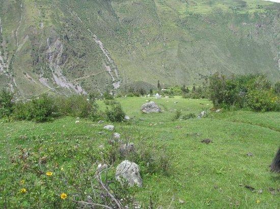 Pumamarca Ruins: Pumamarca