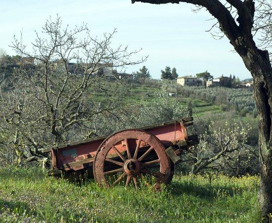 Agriturismo Santa Croce