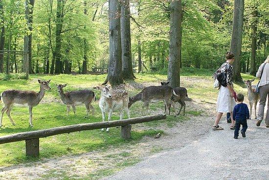 Wildpark Dusseldorf: :)