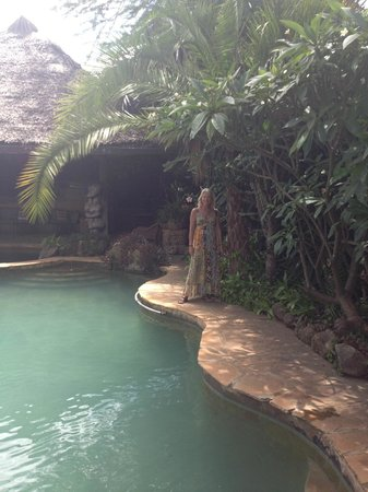 African Heritage House: pool