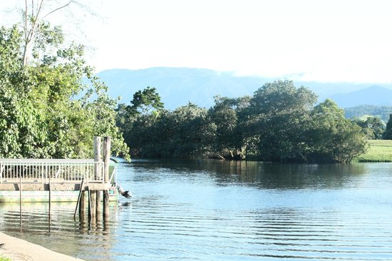 Daintree Riverview Lodges & Camp Ground: Local harbour - 2 minutes away