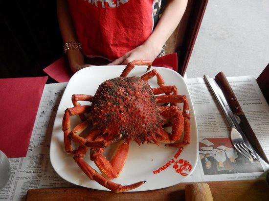 Le Crabe Marteau: Amazingly fresh!