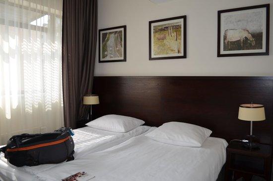 Europeum Hotel: Double room