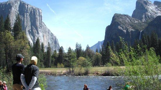 Wonderful Yosemite Valley Floor Tour: Valley View