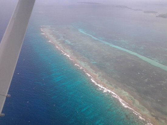 Blackbird Caye Resort: From the plane flying from Belize City