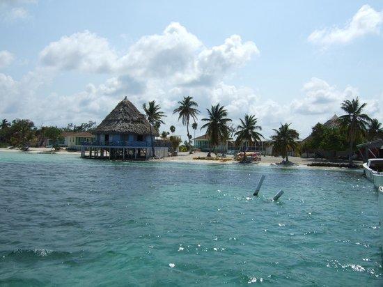 Blackbird Caye Resort: From the Dock