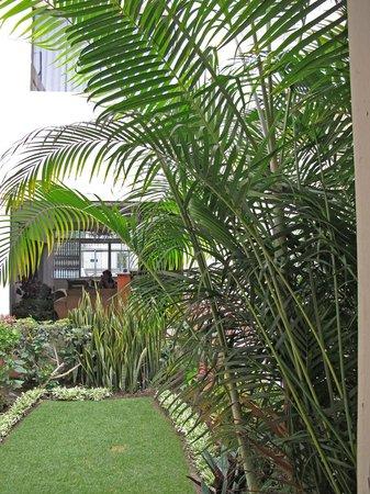 Miraflores Inn: Small hotel garden (with guinea pig named Lucky)
