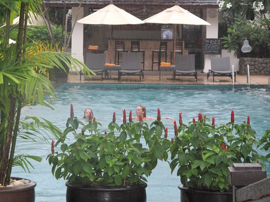 Ayara Hilltops Resort and Spa : vue de la piscine