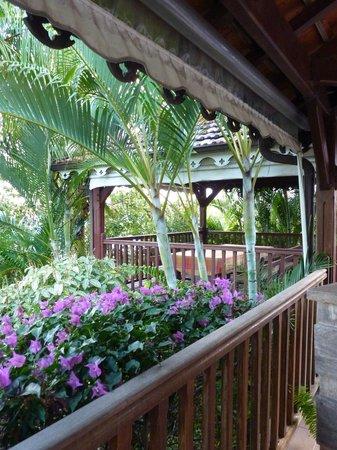 La Villa Sapotille: Vue sur le jardin et l'espace petit-déjeuner