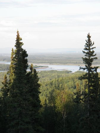 The Aurora Express: view of the Chena River from the caboose
