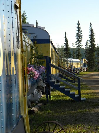 The Aurora Express: Sue keeps it beautiful with flowers