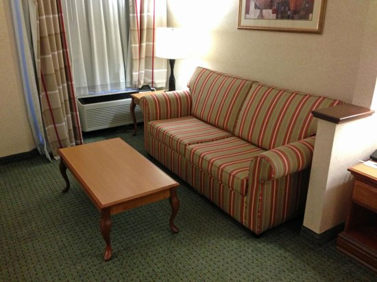 Country Inn & Suites by Radisson, Florence, SC: couch