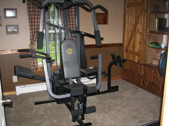 Blonde Bear Bed And Breakfast : Workout room