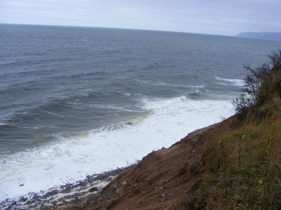 Gulf Breeze: Oceanview back of property.