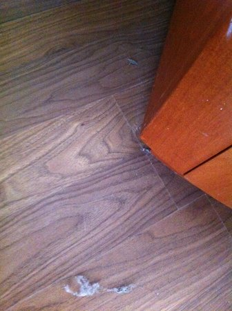Leonardo Suite Tel-Aviv Bat-Yam: Dust on the Floor