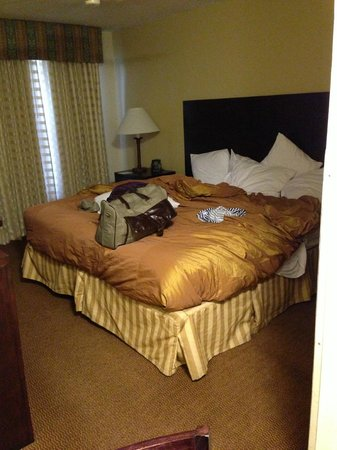 Homewood Suites by Hilton Austin South : The size of the king bedroom, and the bed.