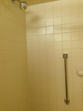 Homewood Suites by Hilton Austin South: The average shower.