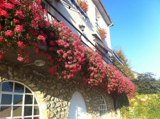 Cumieres, Frankrike: DES FLEURS