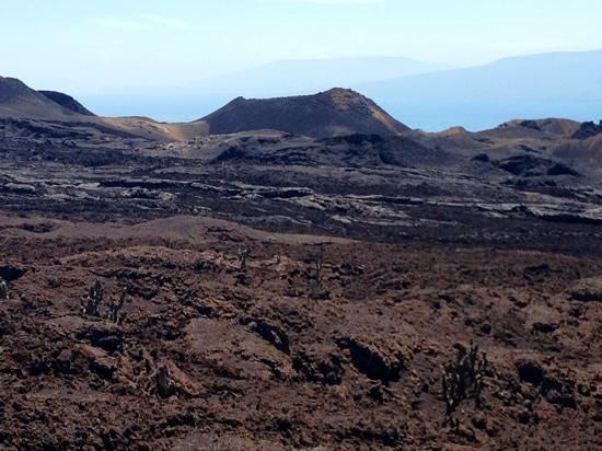 Sierra Negra: The lava fields at Vulcan Chico