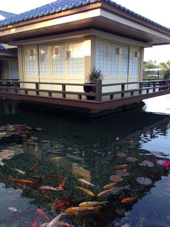 Hilton Waikoloa Village Imari Restaurant