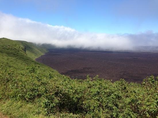 Sierra Negra: The caldera