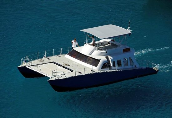 Plongee Caraibes Catamaran: le Blue cat catamaran