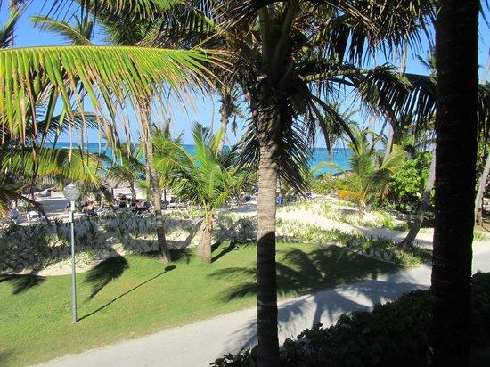 Grand Palladium Punta Cana Resort & Spa: View from the room