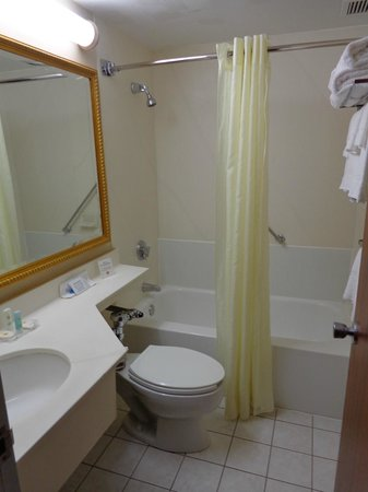 Comfort Inn Manchester Airport: Bathroom