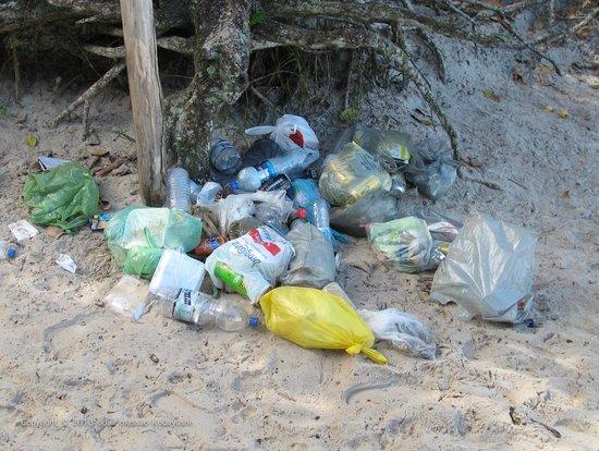 Lopes Mendes Beach: Infelizmente pessoas mal educadas