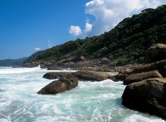 Lopes Mendes Beach: .
