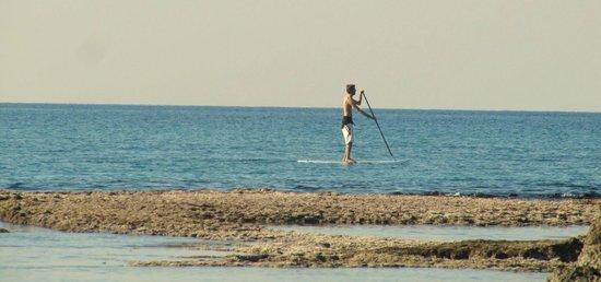 The Resort Hostel: Kite surf, Paddle board at Mikhmoret Beach