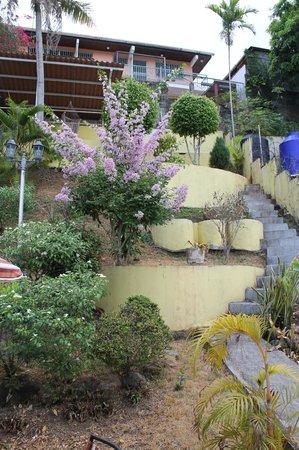 Mediterranean Dreams: Jardín