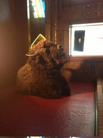 Bullwinkle's Top Hat Bistro: Buffalo Head At Bullwinkles