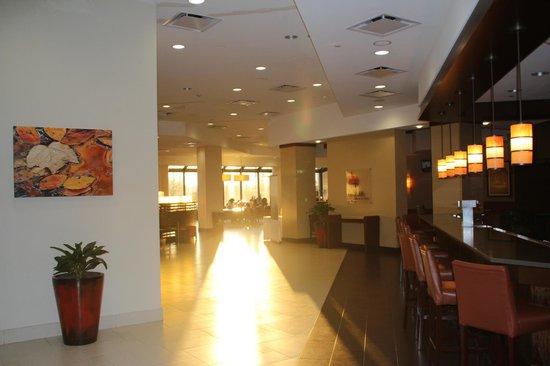 Edison, NJ: 吧檯、大廳