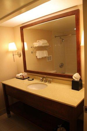 Sheraton Edison Hotel Raritan Center: 浴室