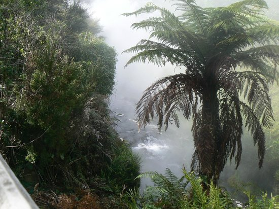 Waikite Valley Thermal Pools: Nature Walk