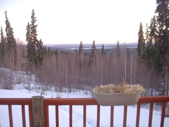 A Moose in the Garden: Front- overlooking the valley