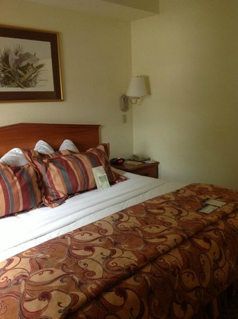 BEST WESTERN Gateway Grand: King Bed