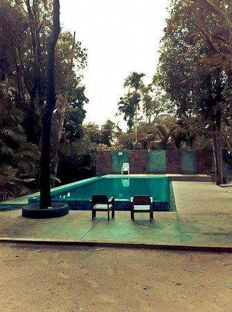 Fern House Retreat: swimming pool