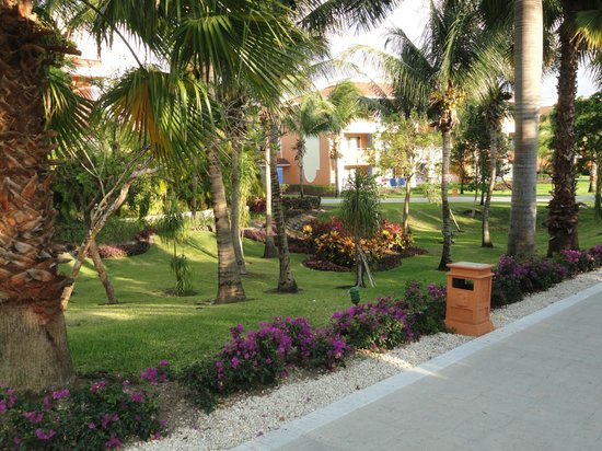 Grand Bahia Principe Tulum : Landscape is amazing everywhere