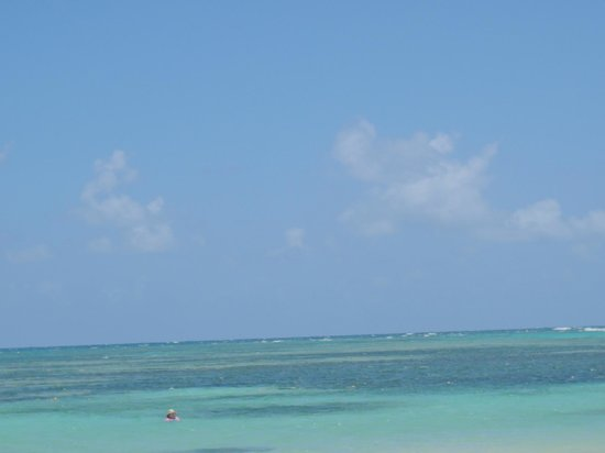 Catalonia Bavaro Beach, Casino & Golf Resort: nice view