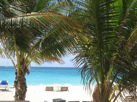 SXM Yoga: the beach