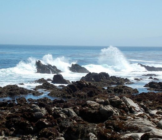 Monterey Bay: waves crash into the rocks