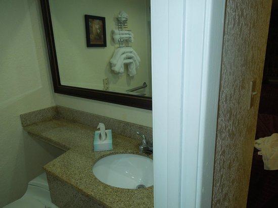 Orlando Metropolitan Resort: Baño